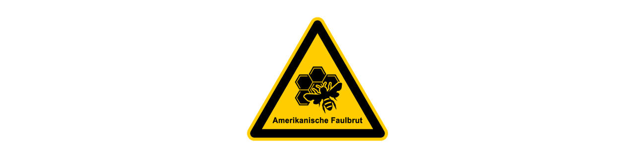 Amerikanische Faulbrut