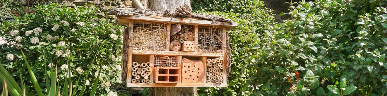Ein Insektenhotel am Baumstamm